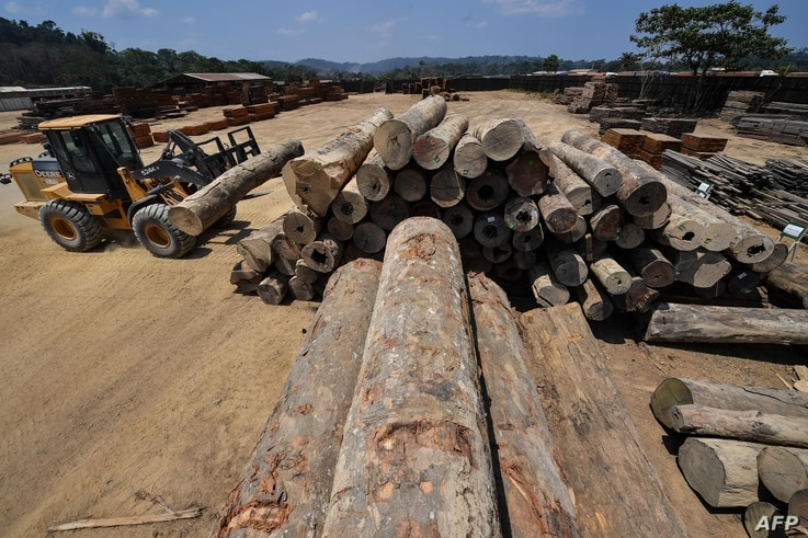 An employee uses heavy machinery to stack wood logs at the Serra Mansa logging and sawmill company, in Moraes Almeida district,…