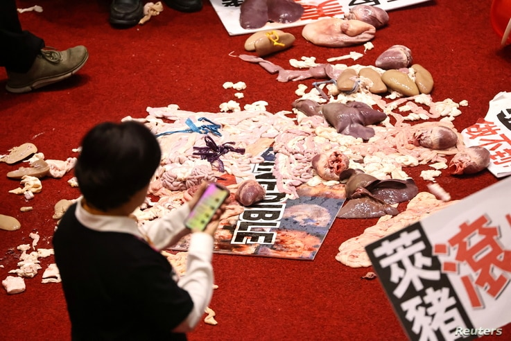 Pork intestines and other organs are seen on the ground after Taiwan lawmakers threw the parts at each other during a scuffle…