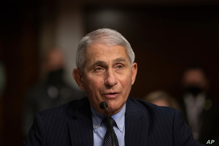 FILE - Dr. Anthony Fauci, Director of the National Institute of Allergy and Infectious Diseases at the National Institutes of Health, speaks during a Senate hearing on COVID-19, on Capitol Hill, in Washington, Sept. 23, 2020.