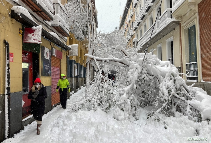 People walk past trees fallen on a street, during a heavy snowfall in the centre of Madrid, Spain January 9, 2021. REUTERS…
