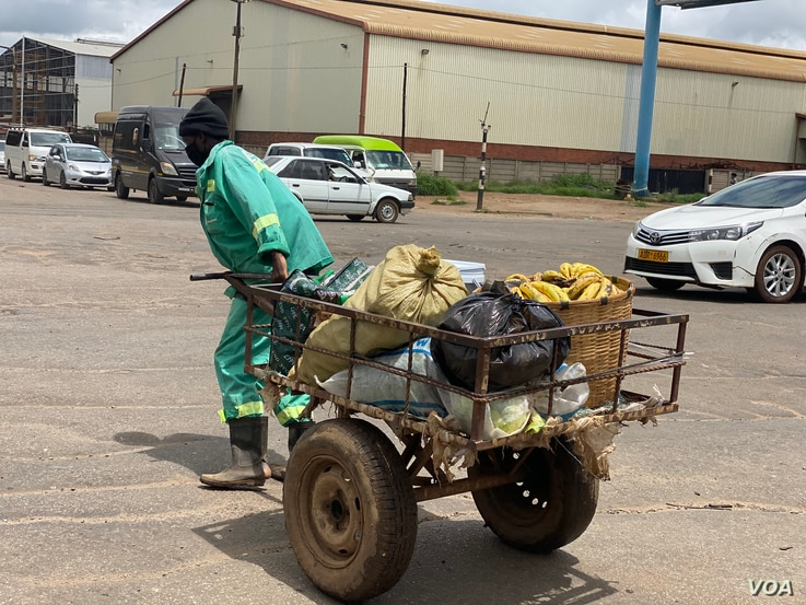 Banana vendor Brian Mutera says he is yet to receive government assistance promised last March, unlike the situation in other countries worldwide,   Harare, Jan. 30, 2021. (Columbus Mavhunga/VOA)