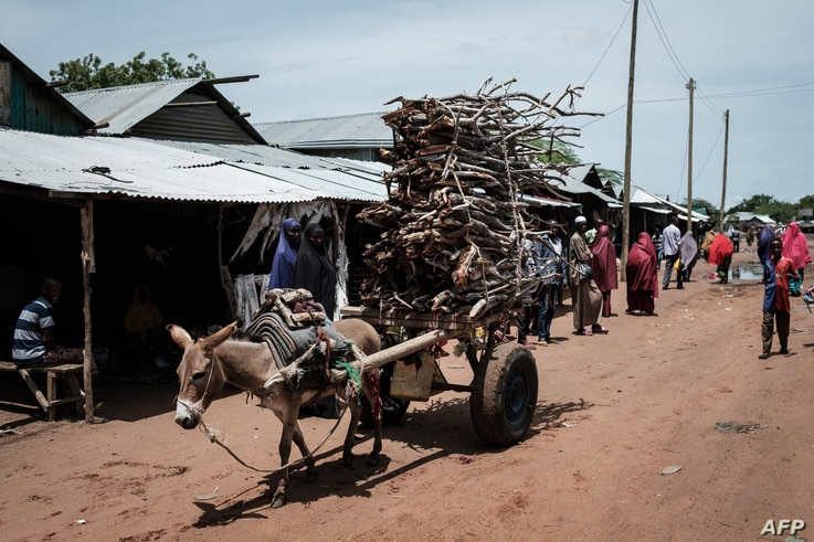 A donkey pulls a cart loaded with firewood at the Dadaab refugee complex, northeastern Kenya, on April 18, 2018. - Dadaab is…