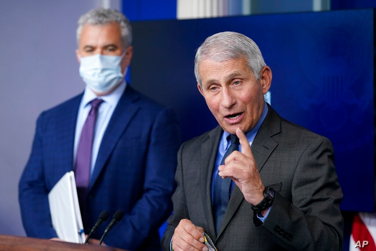 Dr. Anthony Fauci, director of the National Institute of Allergy and Infectious Diseases, speaks alongside White House COVID-19…