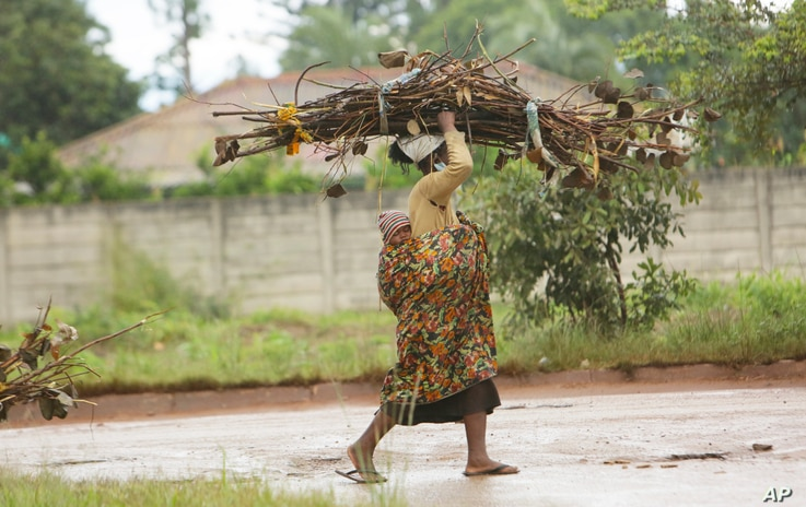 A woman with a baby strapped on her back carries firewood for cooking on the streets of Harare, Zimbabwe, March 2, 2021.