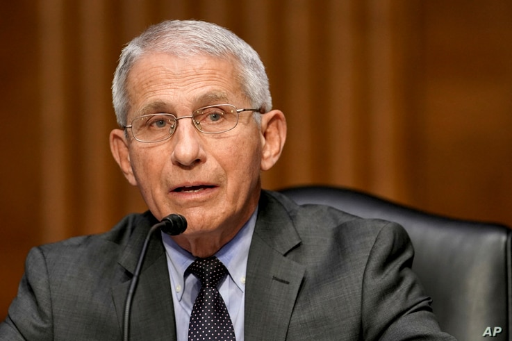 Dr. Anthony Fauci, director of the National Institute of Allergy and Infectious Diseases, speaks during a Senate Health,…