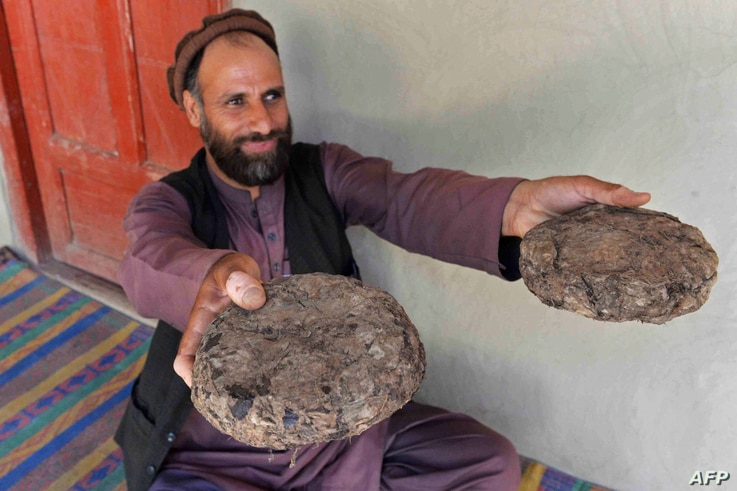 FILE - 37-year-old farmer Mohaiyudeen displays packages of opium after harvesting it from his poppy fields in the Surkh-Rod district of Nangarhar province, Afghanistan, June 28, 2020.