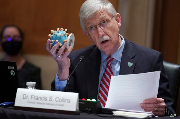 NIH Director Dr. Francis Collins holds up a model of the coronavirus as he testifies before a Senate Appropriations Subcommittee Capitol Hill in Washington, May 26, 2021.