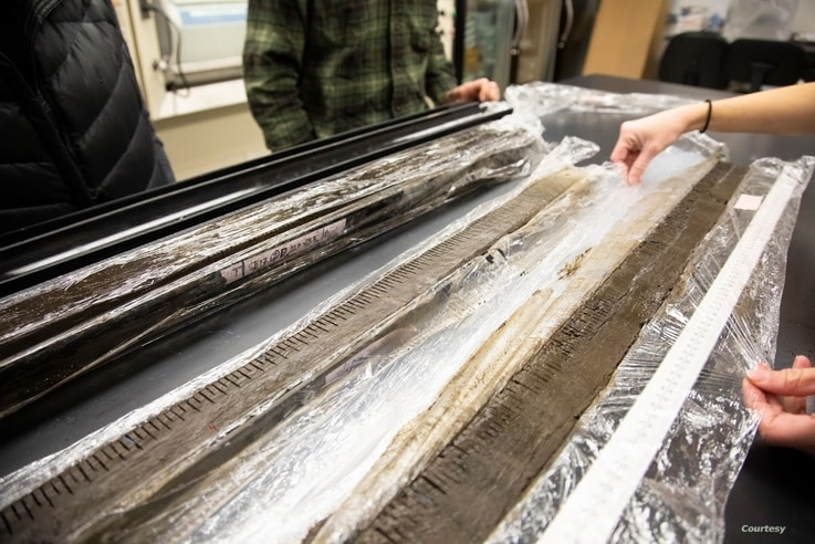 University of Montana researchers examine lake sediment cores from subalpine forests in the Rocky Mountains. Each core is sliced into sections, and variation in charcoal within the core is used to reconstruct past wildfires. (University of Montana)