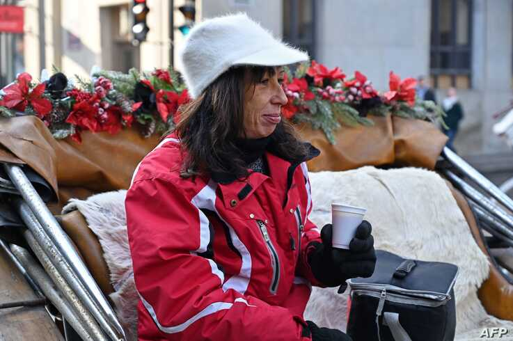 Coachwoman Nathalie Matte, 52, who's about to lose her job after Montreal's horse-drawn carriages will be taken off the roads…