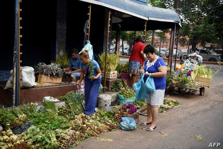 Women buy medicinal plants in Asuncion, on April 2, 2020. - More than 20,000 cases of COVID-19 were registered in Latin America…