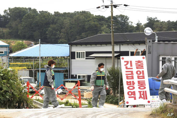 Quarantine officials stand guard as a precaution against African swine fever near a pig farm in Paju, South Korea, Friday, Sept…