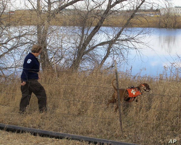 Laramie County Sheriff's Office deputy Mel Gothard follows a search dog named Copper around a lake on the outskirts of Cheyenne…