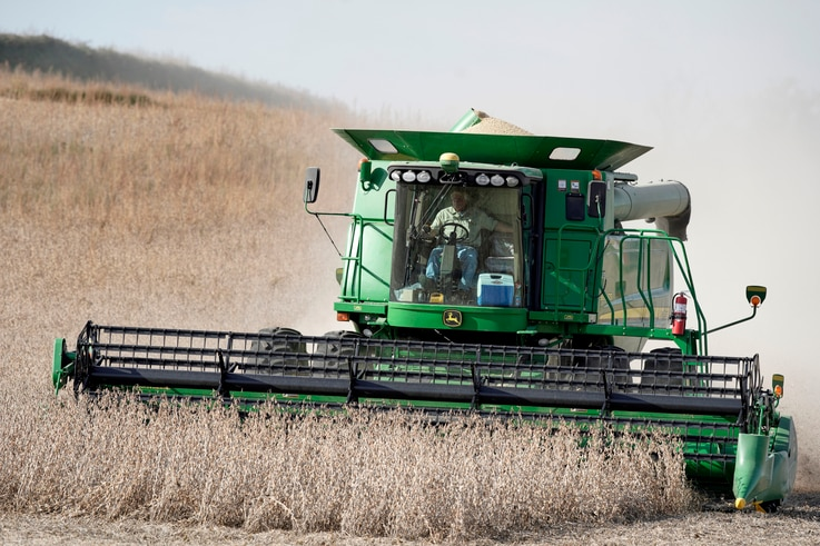 A combine harvests soybeans in rural Blair, Neb., Thursday, Oct. 17, 2019. (AP Photo/Nati Harnik)
