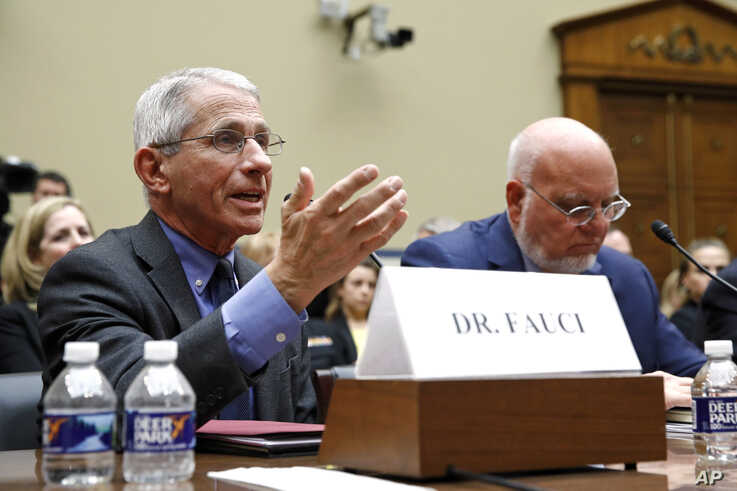 Dr. Anthony Fauci, left, director of the National Institute of Allergy and Infectious Diseases, testifies before a House…