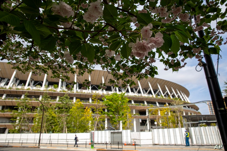 Cherry blossom flowers bloom outside the Japan National Stadium, where opening and closing ceremonies and other events for…