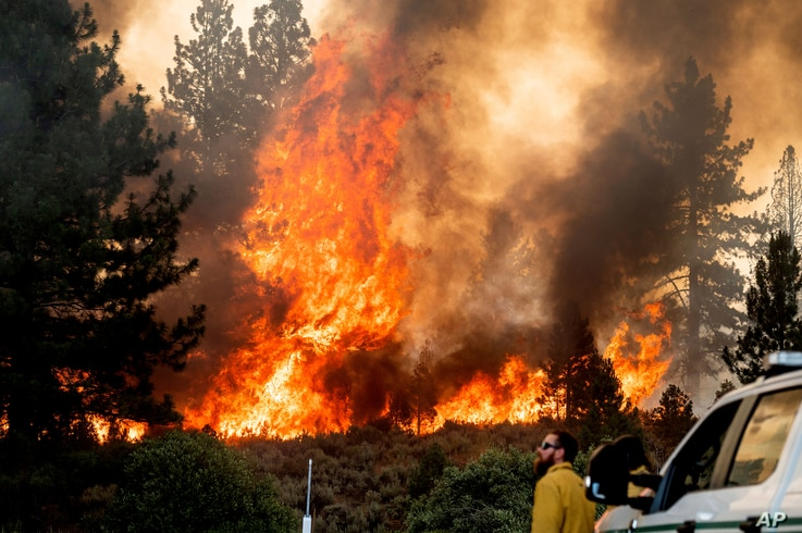 Firefighter Kyle Jacobson monitors the Sugar Fire, part of the Beckwourth Complex Fire, burning in Plumas National Forest,…