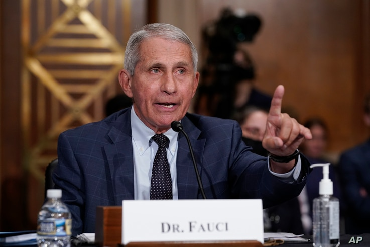 Top infectious disease expert Dr. Anthony Fauci responds to accusations by Sen. Rand Paul, R-Ky., as he testifies before the...