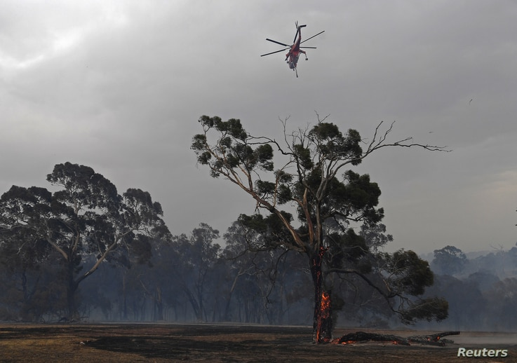 Sikorsky S-64 Skycrane helicopter flies over a burning tree after a fire impacted Clovemont Way, Bundoora in Melbourne,…