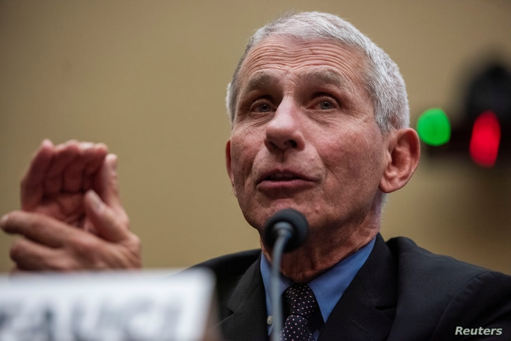Anthony Fauci, director of the NIH National Institute for Allergy and Infectious Diseases, testifies before a House Energy and…