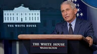 Dr. Anthony Fauci, director of the National Institute of Allergy and Infectious Diseases, speaks during a briefing with the…