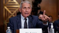 Top infectious disease expert Dr. Anthony Fauci responds to accusations by Sen. Rand Paul, R-Ky., as he testifies before the…