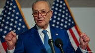 Senate Majority Leader Chuck Schumer holds a news conference after the Senate Democrat Policy luncheon, in Washington