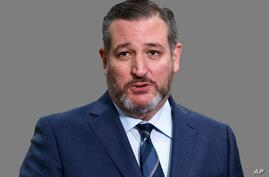 Ted Cruz headshot, as US Senator of Texas, graphic element on gray