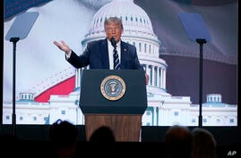 President Donald Trump speaks to the 2020 Council for National Policy Meeting, Friday, Aug. 21, 2020, in Arlington, Va. (AP…