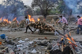 A worker carries wood on a hand cart as multiple funeral pyres of COVID-19 victims burn at a crematorium on the outskirts of…