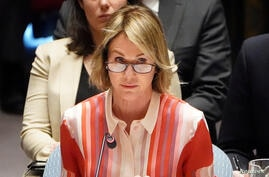 FILE PHOTO: U.S. Ambassador to UN Craft attends Security Council meeting about situation in Syria in New York City