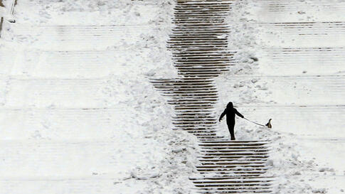 A man walks his dog in the snow in a park in Bucharest February 2, 2012. (Reuters)
