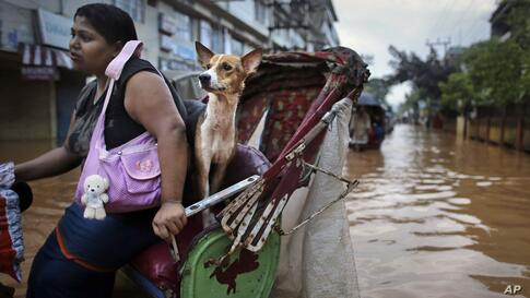 A woman and her dog ride in a rickshaw through floodwaters in Gauhati, India. Several people have been killed due to electrocution and landslides triggered by incessant rains in India's northeastern state of Assam.