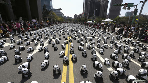 """Papier mache pandas, created by French artist Paulo Grangeon, are seen displayed outside the Taipei City Hall in Taiwan as part of an exhibition called """"Pandas on Tour""""."""