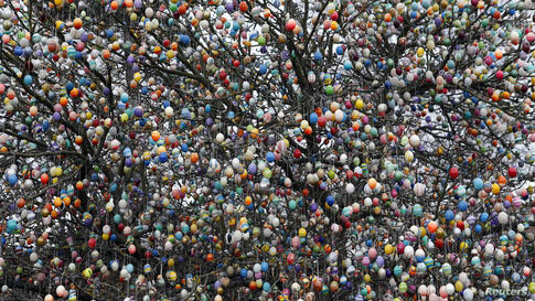 Easter eggs adorn an apple tree in the garden of the summerhouse of German pensioners Christa and Volker Kraft, in the eastern German town of Saalfeld. Each year since 1965 they spend up to two weeks decorating the tree with their collection of 10,000 ...