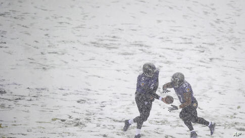 Baltimore Ravens quarterback Joe Flacco, left, hands the ball off to running back Ray Rice as snow falls in the first half of an NFL football game against the Minnesota Vikings in Baltimore, Maryland, USA.