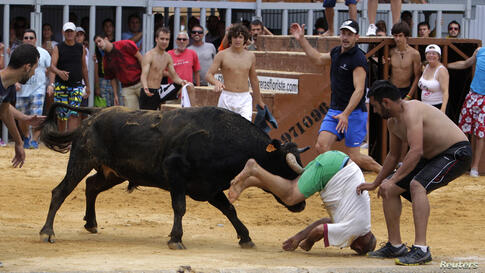 "A reveler gets gored by a bull during the ""Bous a la Mar"" festival in the eastern Spanish coastal town of Denia."