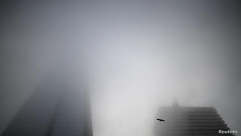 A pigeon flies into the early morning mist as fog engulfs The Shard in central London.