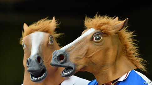 Spectators enjoy the match while wearing horse masks during day two of the first Ashes cricket Test match between England and Australia at the Gabba Cricket Ground in Brisbane.