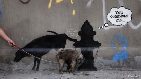 A dog urinates on a new work by British graffiti artist Banksy on West 24th street in New York City, Oct. 3, 2013.