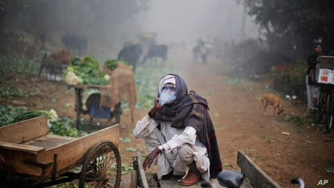 An Indian laborer, wrapped in a blanket, smokes while sitting in his rickshaw on a foggy morning in New Delhi, Dec. 17, 2013.