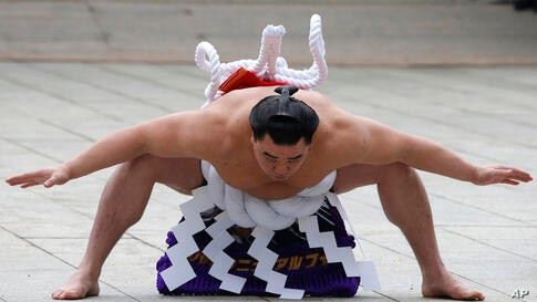 Sumo grand champion Harumafuji of Mongolia performs his ring entry forms to dedicate to the Meiji Shrine in Tokyo, Japan. The Shinto ritual is part of the annual New Year's celebrations at the shrine.