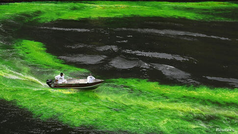 The Chicago River is dyed green in celebration of St. Patrick's Day in Chicago, Illinois, USA.