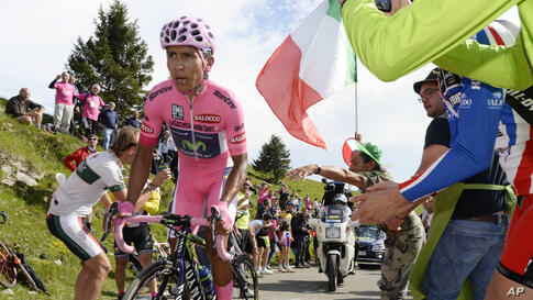 Colombia's Nairo Quintana pedals on his way to win the 19th stage of the Giro d'Italia, Tour of Itay cycling race, in Bassano del Grappa.