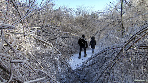 People walk through the ice encrusted forest in Earl Bales Park following an ice storm in Toronto, Canada, Dec. 24, 2013.