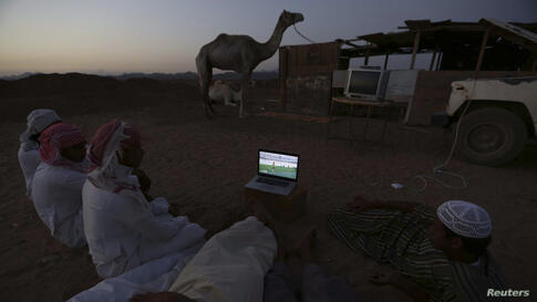Men watch the 2014 World Cup Group B soccer match between the Netherlands and Australia on a laptop, at a camel market in Daba near Tabuk, Saudi Arabia, June 18, 2014.