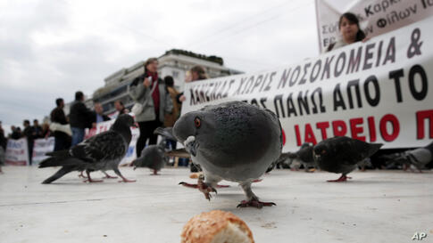 A pigeon eyes a piece of bread outside the Greek Parliament, as anti-austerity protesters hold up banners behind, Athens, Greece.