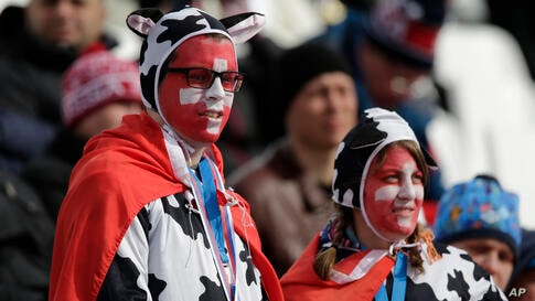 Swiss fans wear cow costumes and national flags at the Alpine ski venue for the men's supercombined at the Sochi 2014 Winter Olympics, Feb. 14, 2014.