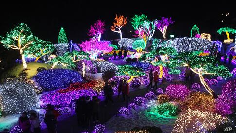 Visitors' silhouettes can be detected against lights decorating trees to celebrate the upcoming Christmas and New Year, at Garden of Morning Calm in Gapyeong, South Korea.