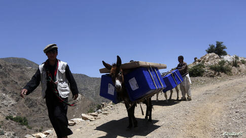 Afghan men lead donkeys loaded with ballot boxes and other election material to be transported to polling stations which are not accessible by road in Shutul, Panjshir province. The second round presidential election will be held on June 14.