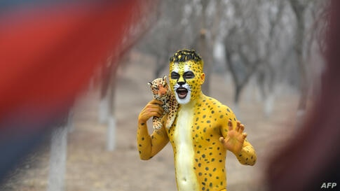 A participant dressed up as a leopard posing for a photo in the annual 3.5 km Undie Run held in the Olympic Forest Park smog-covered Beijing, China, Feb. 23, 2014..